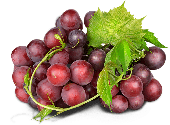 грозд